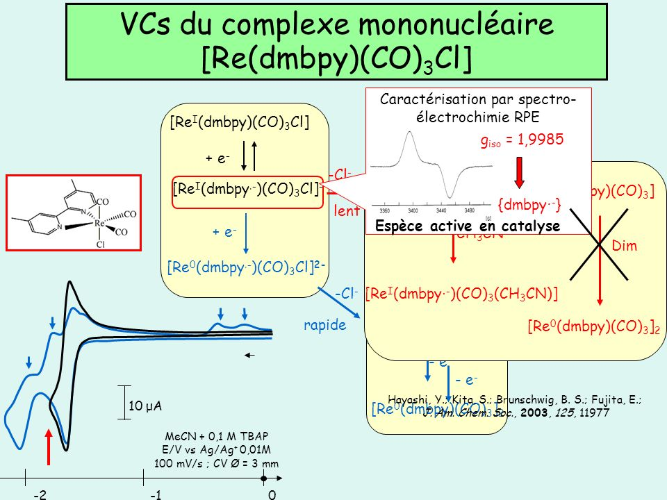 VCs du complexe mononucléaire [Re(dmbpy)(CO)3Cl]